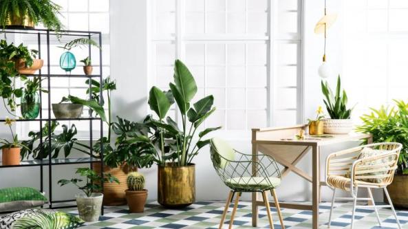 Interior Design Trends 48 HOME AND SOUL Amazing Plant Interior Design